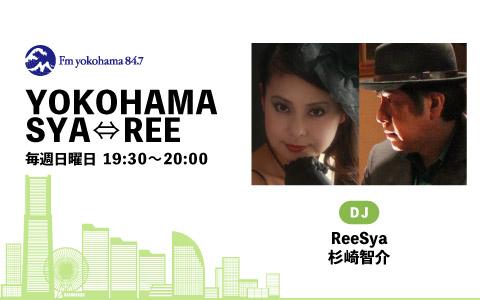 YOKOHAMA SYA⇔REE