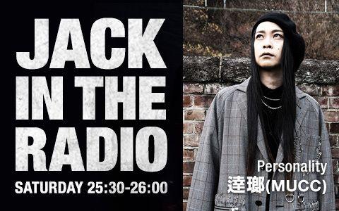JACK IN THE RADIO