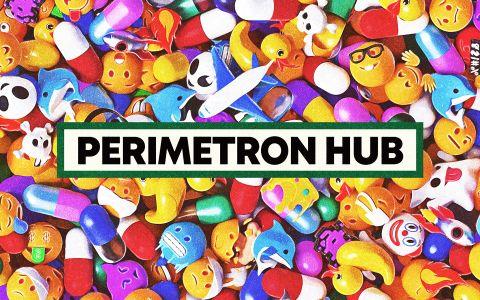 PERIMETRON HUB