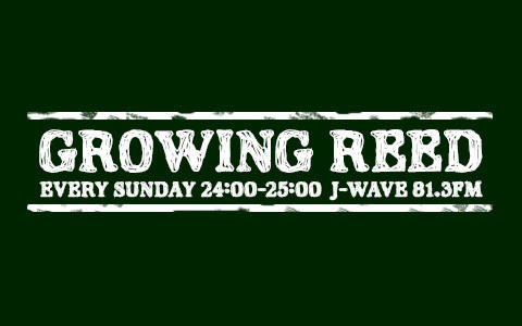 GROWING REED