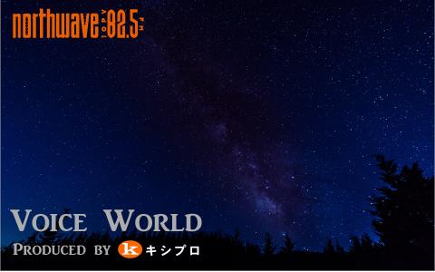 Voice World