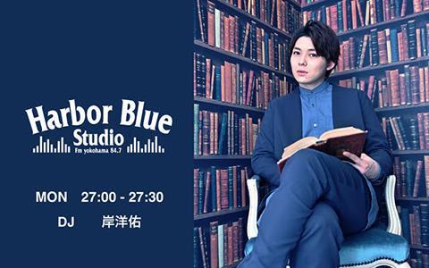 Harbor Blue Studio
